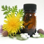 Dietary Supplements to Aid Breast Growth